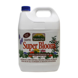 """White bottle with blue screw cap. The label reads """"Super Bloom"""" in red font."""