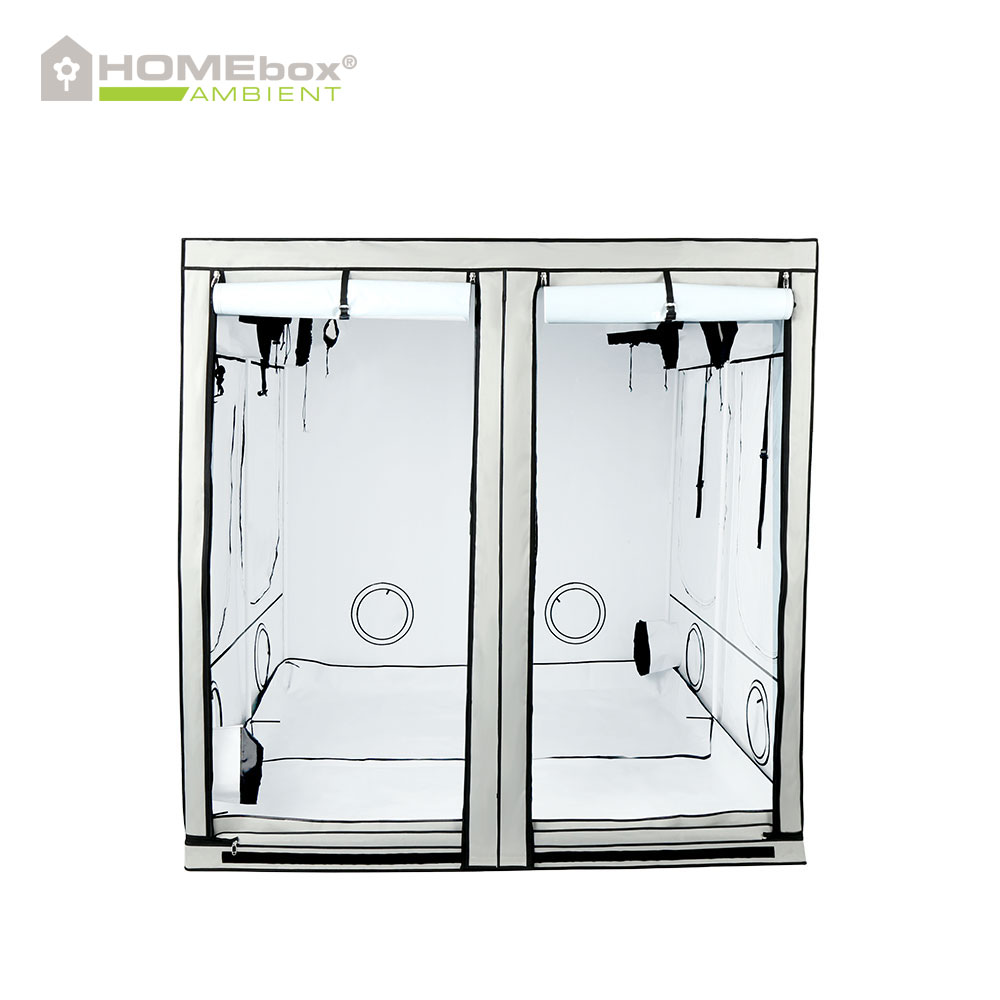 homebox evolution q200 grow tents for indoor gardening lux cuttings. Black Bedroom Furniture Sets. Home Design Ideas
