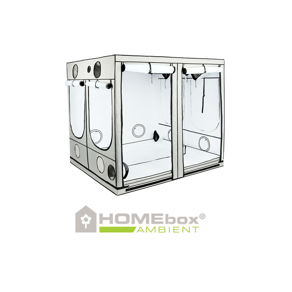 homebox evolution par q240 growbox grow tents for indoor gardening lux cuttings. Black Bedroom Furniture Sets. Home Design Ideas
