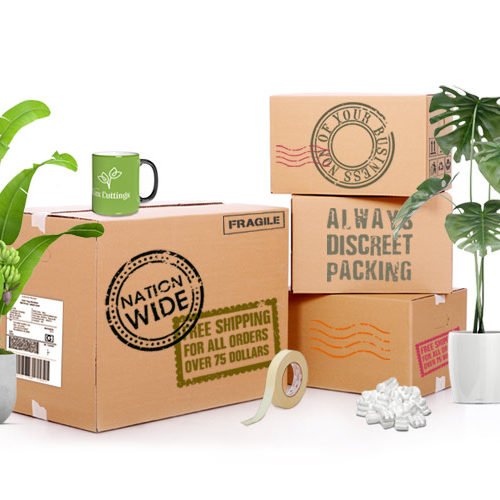 nationwide free shipping