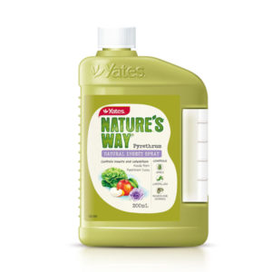Yates natural concentrate in yellow bottle with white cap